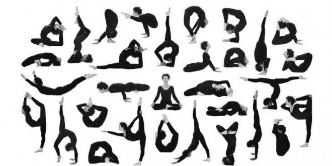 انواع حرکات یوگا ( نامها و اصطلاحات )