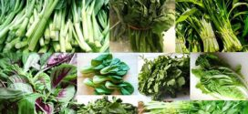 سبزی های مفید و پرخاصیت