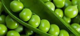 رژیم گیاهخواری با ۴ ماده غذایی